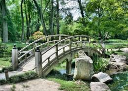 bridge-53769_960_720